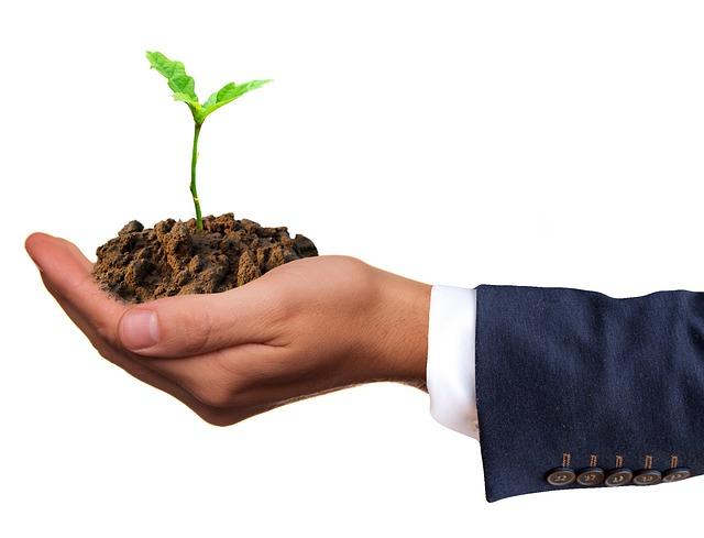 """איך להשביח נכסי נדל""""ן בצורה פאסיבית או אקטיבית בקלות?"""